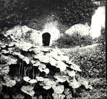 The Holy Well about 1900 [Z50/112/30]